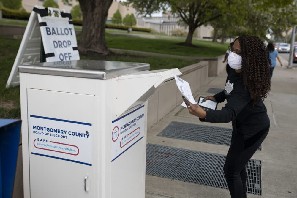 voter drops off her ballot